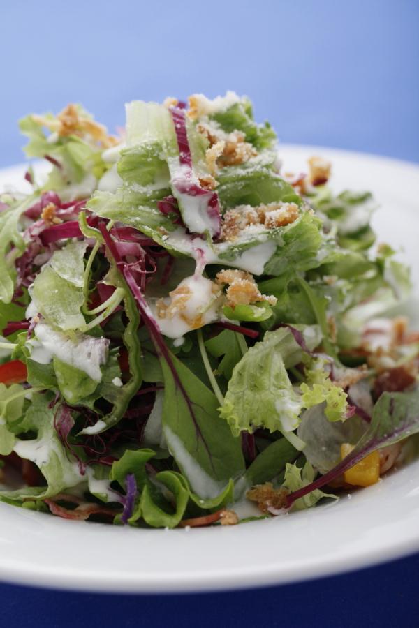 サラダ 前菜 料理写真