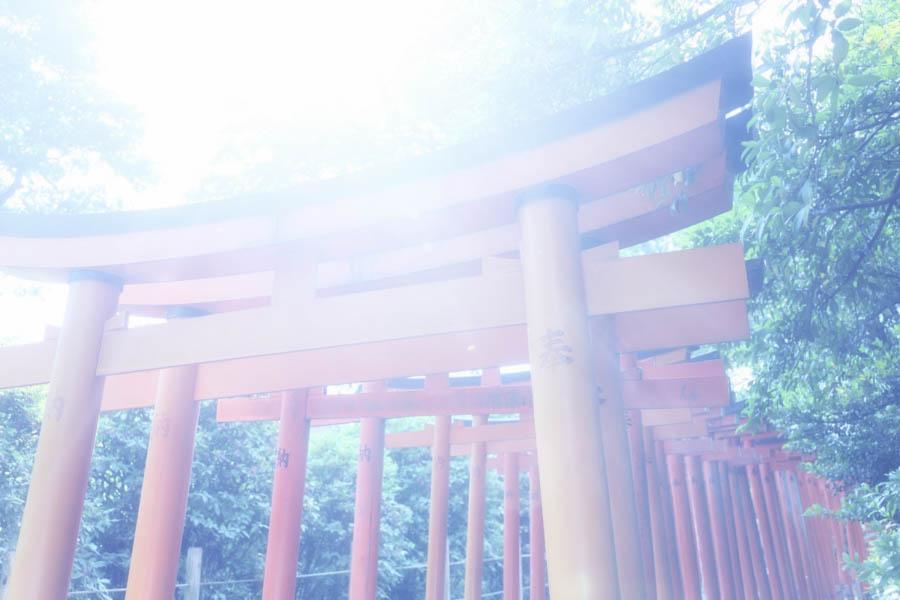 Japan culture Temple10